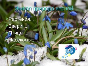Живая природа весной Растения… Звери … Птицы … Насекомые …