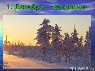 1. Декабрь - «ветрозим»