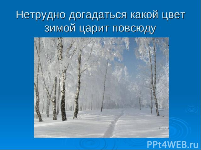 Нетрудно догадаться какой цвет зимой царит повсюду