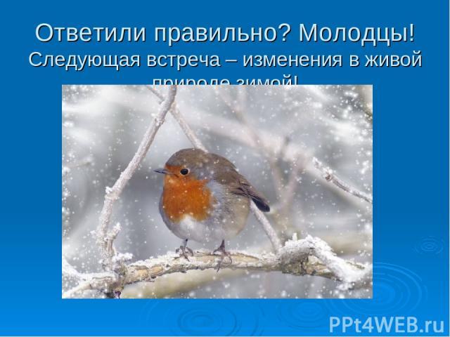 Ответили правильно? Молодцы! Следующая встреча – изменения в живой природе зимой!