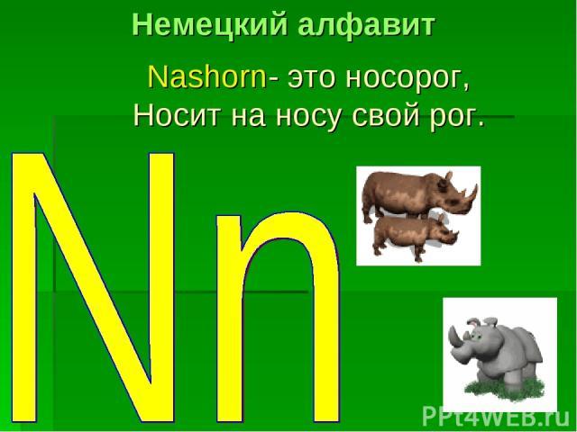 Nashorn- это носорог, Носит на носу свой рог. Немецкий алфавит