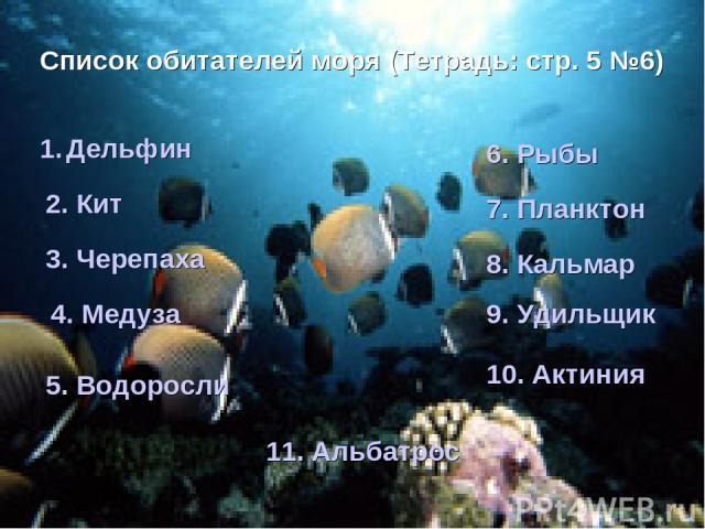 * Список обитателей моря (Тетрадь: стр. 5 №6) Дельфин 2. Кит 3. Черепаха 4. Медуза 5. Водоросли 6. Рыбы 7. Планктон 8. Кальмар 9. Удильщик 10. Актиния 11. Альбатрос