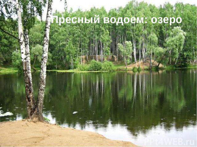 Пресный водоем: озеро