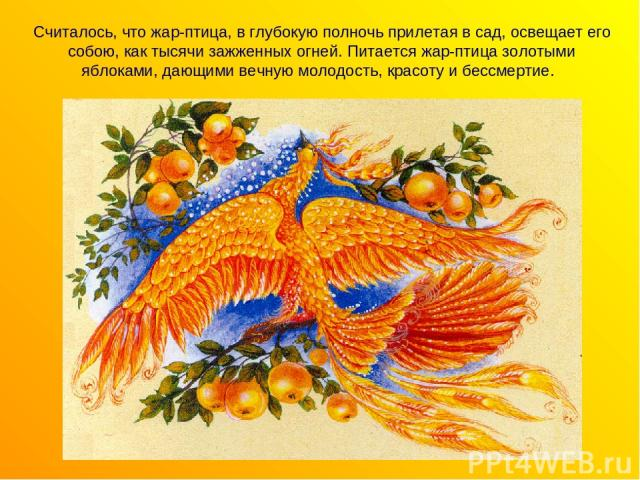 Считалось, что жар-птица, в глубокую полночь прилетая в сад, освещает его собою, как тысячи зажженных огней. Питается жар-птица золотыми яблоками, дающими вечную молодость, красоту и бессмертие.