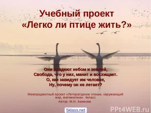 Учебный проект «Легко ли птице жить?» Они владеют небом и землей, Свобода, что у