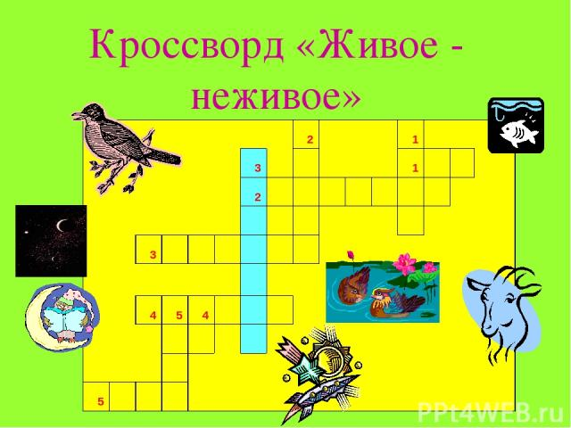 Кроссворд «Живое - неживое»         2    1          3      1          2                            3                                4 5 4          …