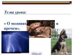 Тема урока: « О молниях, змеях, собаках и прочем». 900igr.net
