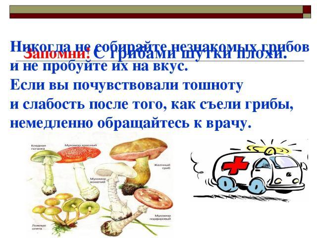 Запомни! С грибами шутки плохи. Никогда не собирайте незнакомых грибов и не пробуйте их на вкус. Если вы почувствовали тошноту и слабость после того, как съели грибы, немедленно обращайтесь к врачу.