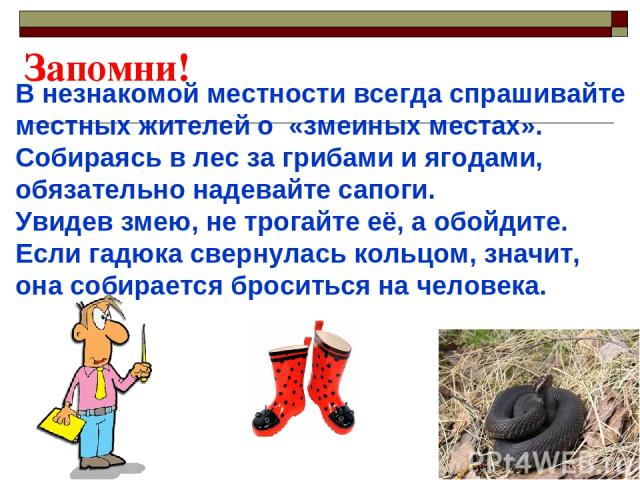 В незнакомой местности всегда спрашивайте местных жителей о «змеиных местах». Собираясь в лес за грибами и ягодами, обязательно надевайте сапоги. Увидев змею, не трогайте её, а обойдите. Если гадюка свернулась кольцом, значит, она собирается бросить…