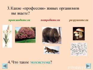 Какие «профессии» живых организмов вы знаете? производители потребители разрушит