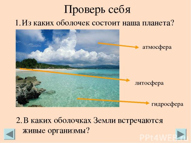 Проверь себя Из каких оболочек состоит наша планета? В каких оболочках Земли встречаются живые организмы? атмосфера литосфера гидросфера