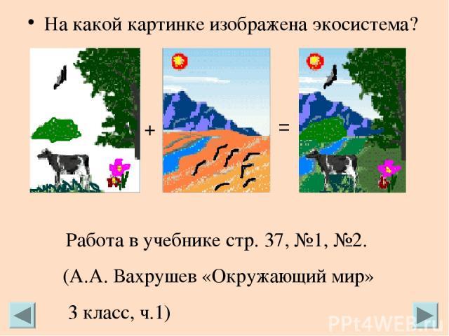 На какой картинке изображена экосистема? + = Работа в учебнике стр. 37, №1, №2. (А.А. Вахрушев «Окружающий мир» 3 класс, ч.1)