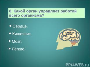 8. Какой орган управляет работой всего организма? Сердце. Кишечник. Мозг. Лёгкие