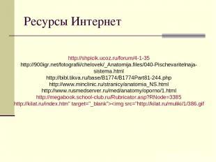 Ресурсы Интернет http://shpicik.ucoz.ru/forum/4-1-35 http://900igr.net/fotografi