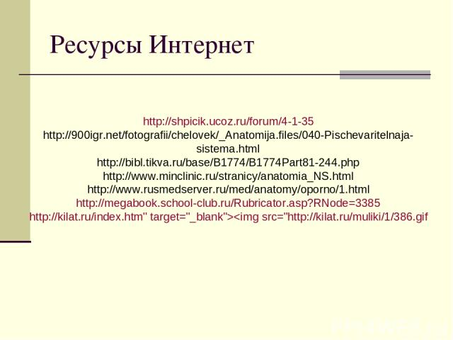 Ресурсы Интернет http://shpicik.ucoz.ru/forum/4-1-35 http://900igr.net/fotografii/chelovek/_Anatomija.files/040-Pischevaritelnaja-sistema.html http://bibl.tikva.ru/base/B1774/B1774Part81-244.php http://www.minclinic.ru/stranicy/anatomia_NS.html http…