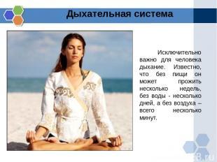 Дыхательная система Исключительно важно для человека дыхание. Известно, что без
