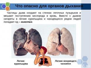 Что опасно для органов дыхания Частицы дыма оседают на стенках легочных пузырько