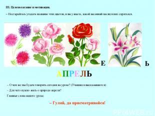 III. Целеполагание и мотивация. – Постарайтесь угадать название этих цветов, и в