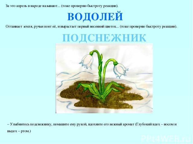 За это апрель в народе называют... (тоже проверяю быстроту реакции). ВОДОЛЕЙ Оттаивает земля, ручьи поят её, и вырастает первый весенний цветок... (тоже проверяю быстроту реакции). ПОДСНЕЖНИК – Улыбнитесь подснежнику, помашите ему рукой, вдохните ег…
