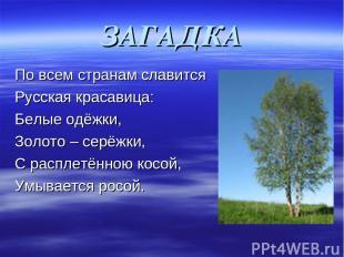 ЗАГАДКА По всем странам славится Русская красавица: Белые одёжки, Золото – серёж