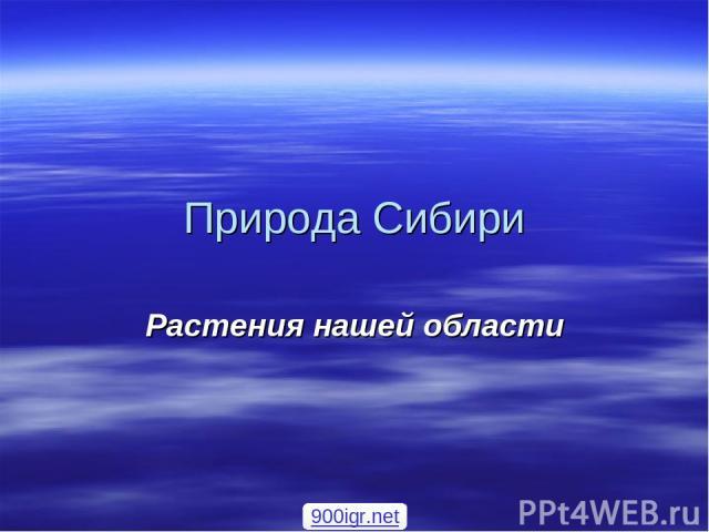 Природа Сибири Растения нашей области 900igr.net