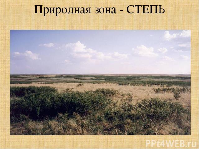 Природная зона - СТЕПЬ