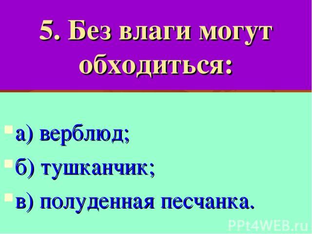 5. Без влаги могут обходиться: а) верблюд; б) тушканчик; в) полуденная песчанка.
