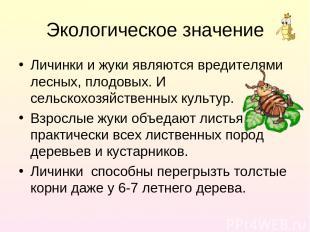 Экологическое значение Личинки и жуки являются вредителями лесных, плодовых. И с