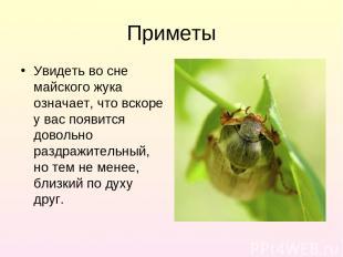 Приметы Увидеть во сне майского жука означает, что вскоре у вас появится довольн