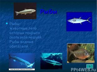 Рыбы Рыбы- животные,тело которых покрыто скользкой чешуёй. Рыбы водные обитатели
