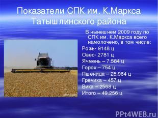 Показатели СПК им. К.Маркса Татышлинского района В нынешнем 2009 году по СПК им.