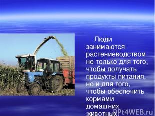 Люди занимаются растениеводством не только для того, чтобы получать продукты пит