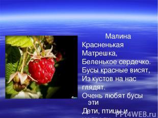 Малина Красненькая Матрешка, Беленькое сердечко. Бусы красные висят, Из кустов н