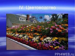 IV. Цветоводство