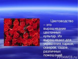 Цветоводство – это выращивание цветочных культур. Их выращивают для украшения па