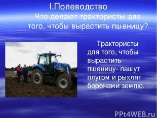 I.Полеводство Что делают трактористы для того, чтобы вырастить пшеницу? Трактори