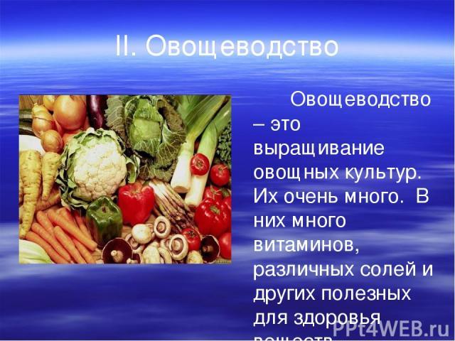 II. Овощеводство Овощеводство – это выращивание овощных культур. Их очень много. В них много витаминов, различных солей и других полезных для здоровья веществ.