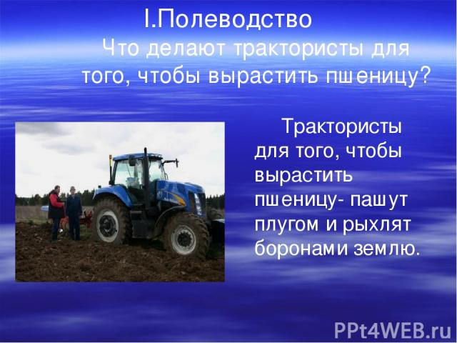 I.Полеводство Что делают трактористы для того, чтобы вырастить пшеницу? Трактористы для того, чтобы вырастить пшеницу- пашут плугом и рыхлят боронами землю.