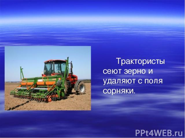 Трактористы сеют зерно и удаляют с поля сорняки.