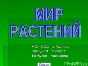 МОУ СОШ с. Чкалово учащийся 2 класса Градусов Александр. 900igr.net