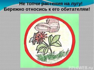 На лугу растут… у) только травянистые растения ф) мхи и лишайники х) кустарники