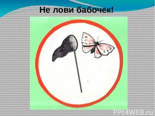3. Растениями луга являются… н) тимофеевка, клевер, нивяник о) ландыш, осока, яс