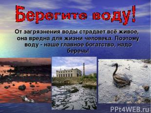 От загрязнения воды страдает всё живое, она вредна для жизни человека. Поэтому в
