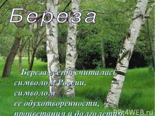 Береза всегда считалась символом России, символом ееодухотворенности, процветан