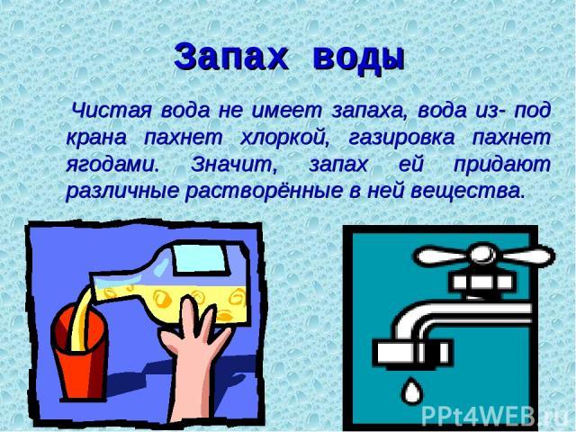 Запах воды Чистая вода не имеет запаха, вода из- под крана пахнет хлоркой, газировка пахнет ягодами. Значит, запах ей придают различные растворённые в ней вещества.