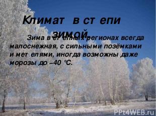 Климат в степи зимой. Зима в степных регионах всегда малоснежная, с сильными поз