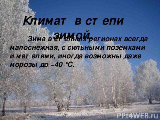 Климат в степи зимой. Зима в степных регионах всегда малоснежная, с сильными позёмками и метелями, иногда возможны даже морозы до −40 °C.