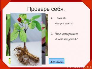 Проверь себя. Назови это растение. 2. Что интересного о нём ты узнал? Венерин ба