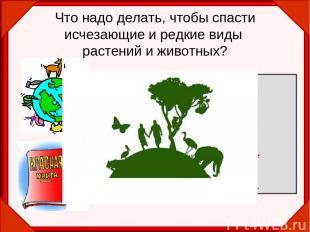 Что надо делать, чтобы спасти исчезающие и редкие виды растений и животных? Запр