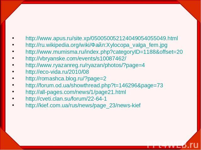 http://www.apus.ru/site.xp/050050052124049054055049.html http://ru.wikipedia.org/wiki/Файл:Xylocopa_valga_fem.jpg http://www.mumisma.ru/index.php?categoryID=1188&offset=20 http://vbryanske.com/events/s10087462/ http://www.ryazanreg.ru/ryazan/photos/…